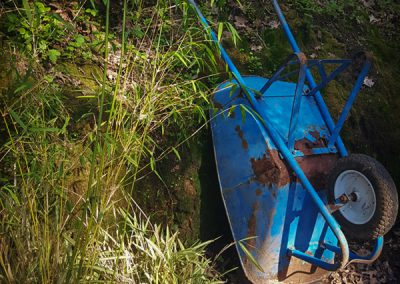 wheelbarrow and bamboo